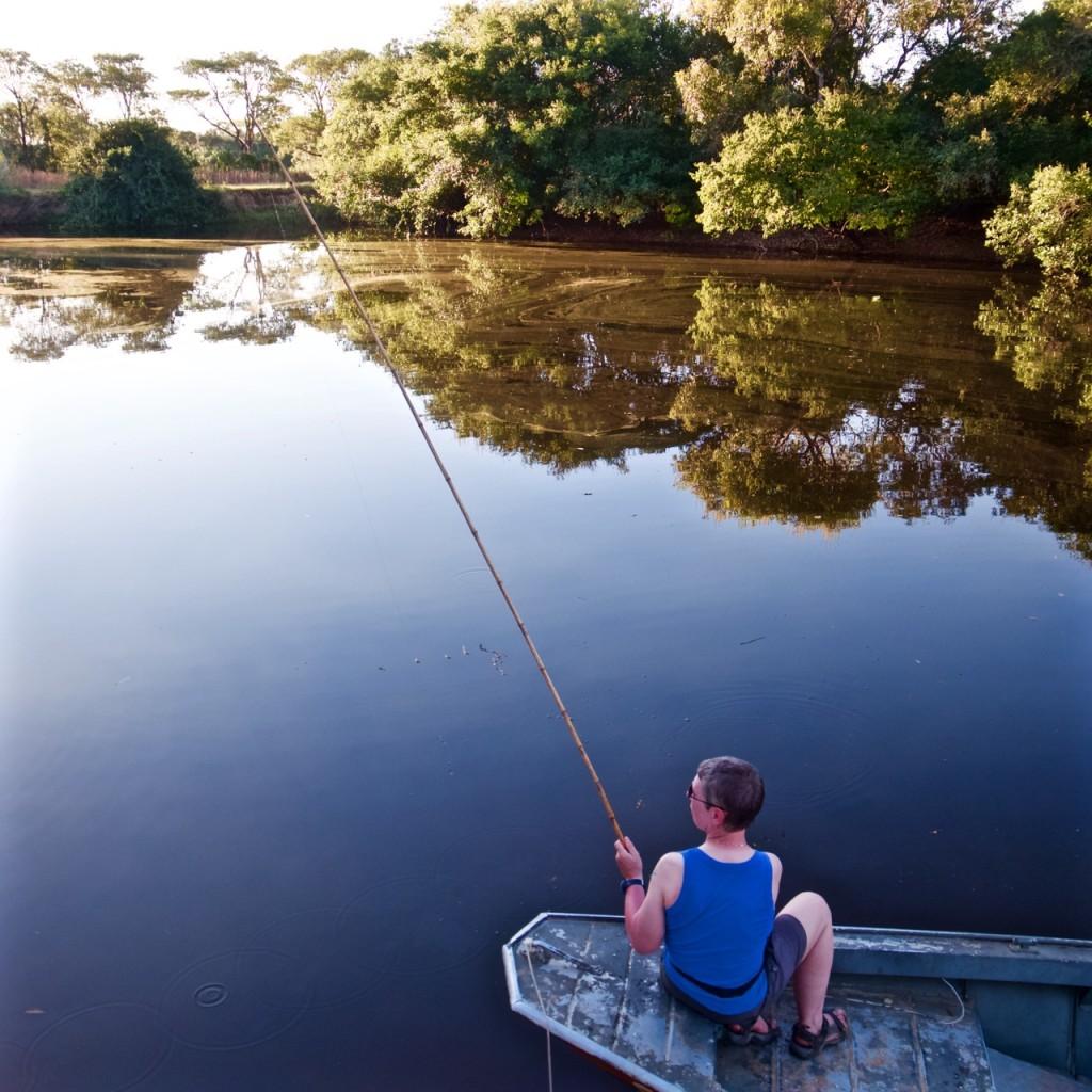 Fishing \ birds
